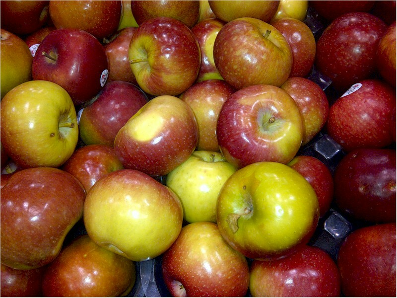 macintosh apples-543232486..jpg